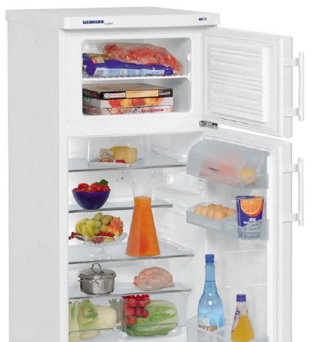 купить Двухкамерный холодильник Liebherr CT 2041 Украина фото 1