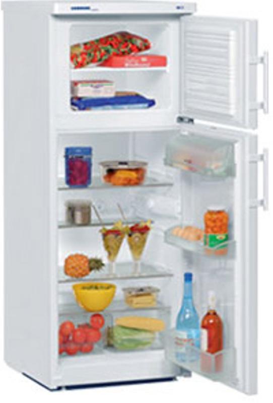 купить Двухкамерный холодильник Liebherr CT 2431 Украина фото 0