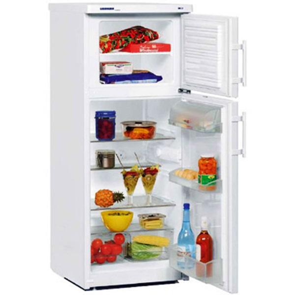 купить Двухкамерный холодильник  Liebherr CTP 2421 Украина фото 0