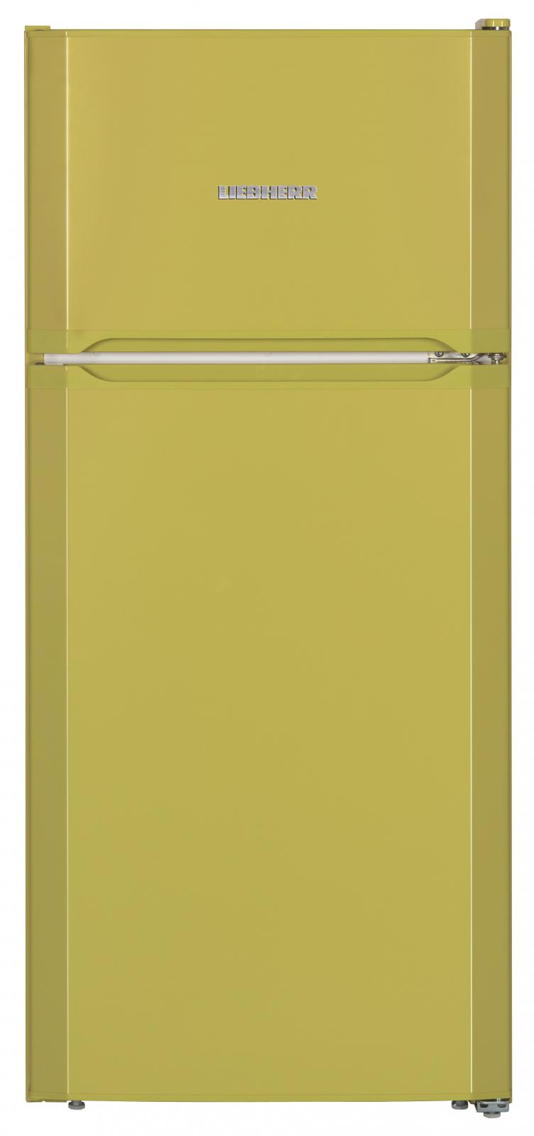 купить Двухкамерный холодильник Liebherr CTPag 2121 Украина фото 1