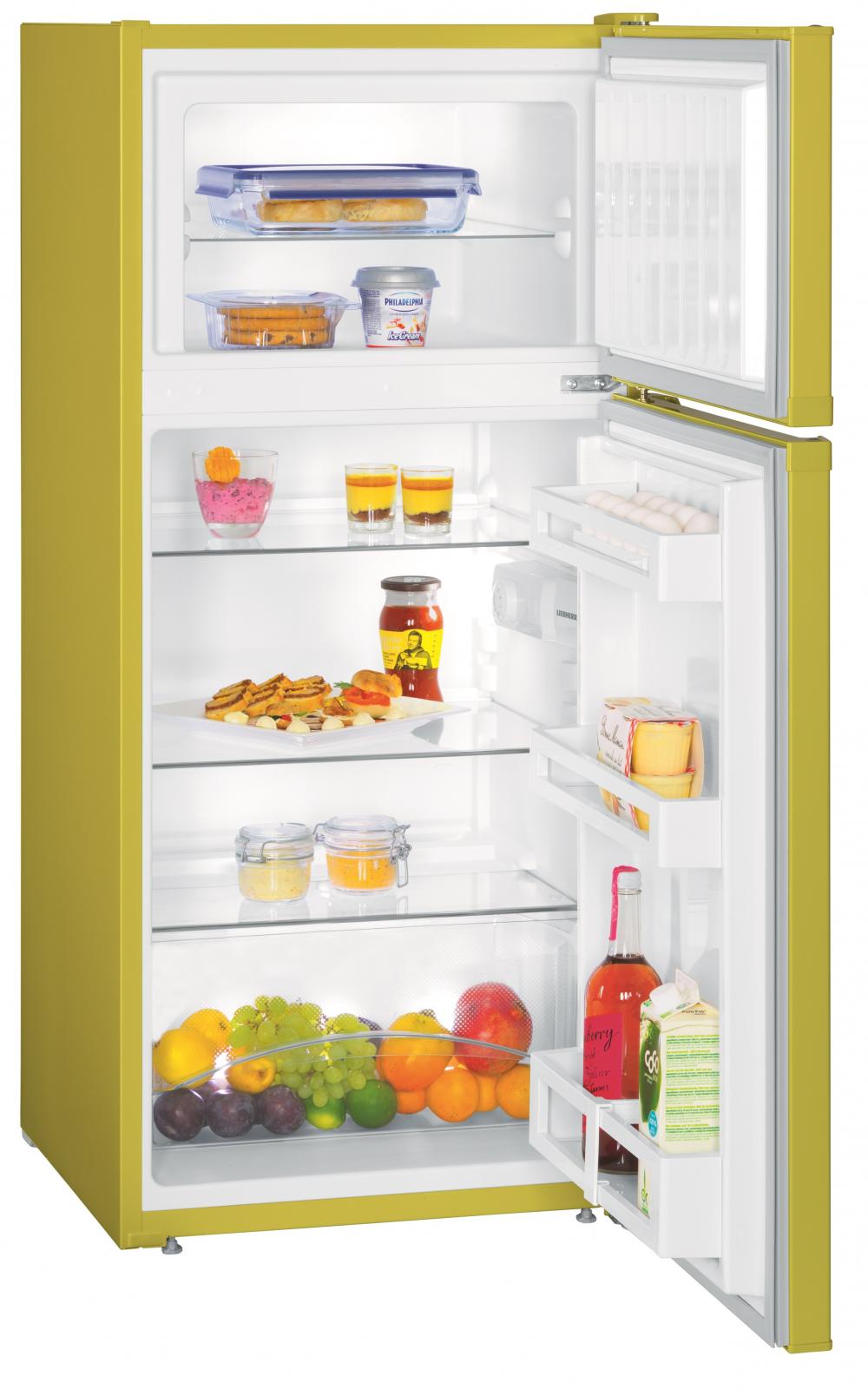 купить Двухкамерный холодильник Liebherr CTPag 2121 Украина фото 0