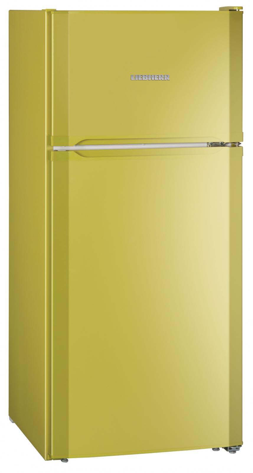 купить Двухкамерный холодильник Liebherr CTPag 2121 Украина фото 3