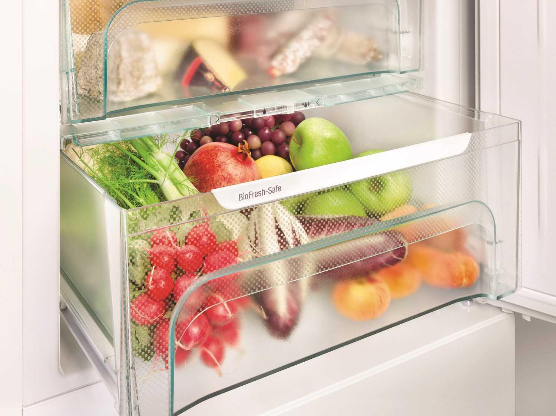 купить Двухкамерный холодильник Liebherr CBNef 4815 Украина фото 13