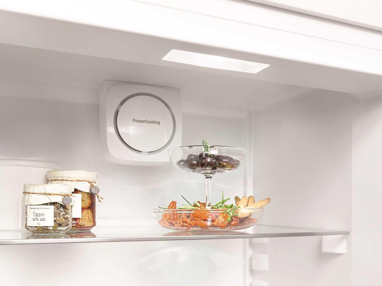 купить Двухкамерный холодильник Liebherr CN 4813 Украина фото 9