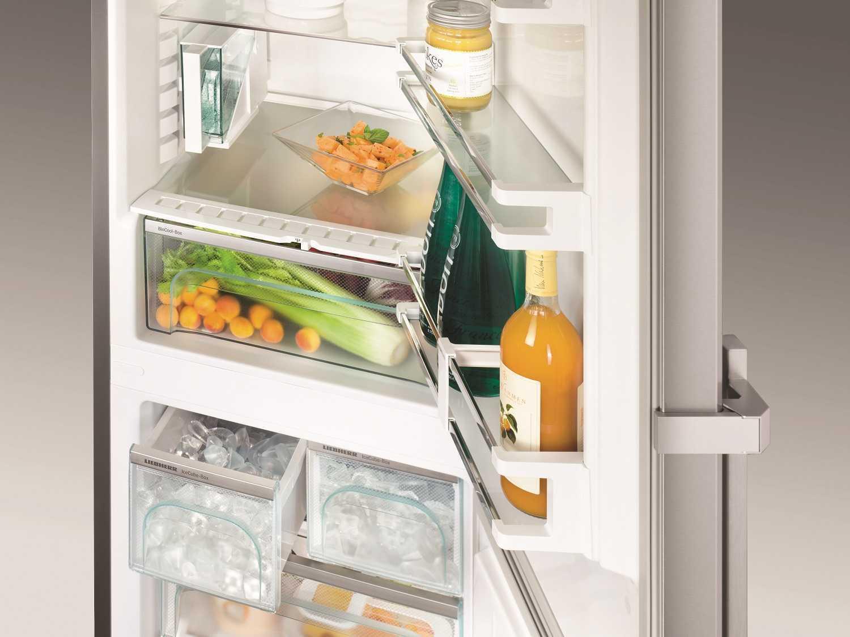 купить Двухкамерный холодильник Liebherr CNPes 4868 Украина фото 11