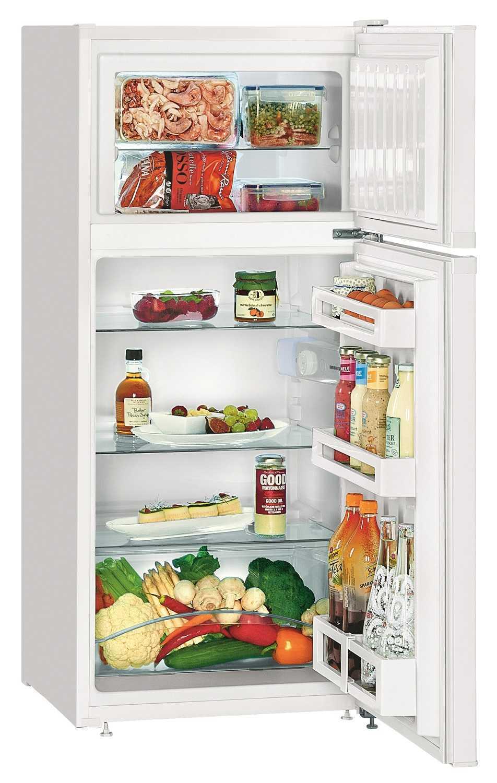 купить Двухкамерный холодильник Liebherr CTP 2121 Украина фото 0