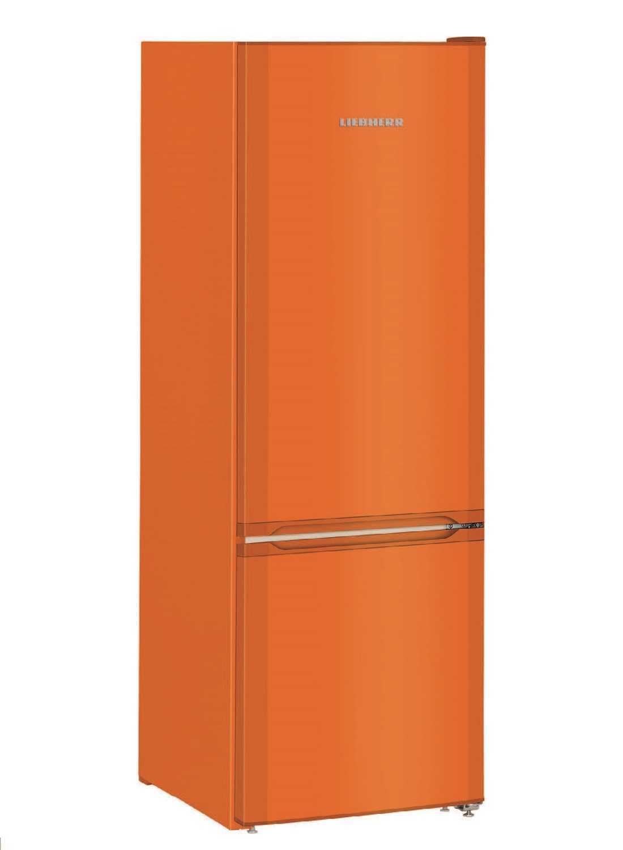 купить Двухкамерный холодильник Liebherr CUno 2831 Украина фото 4