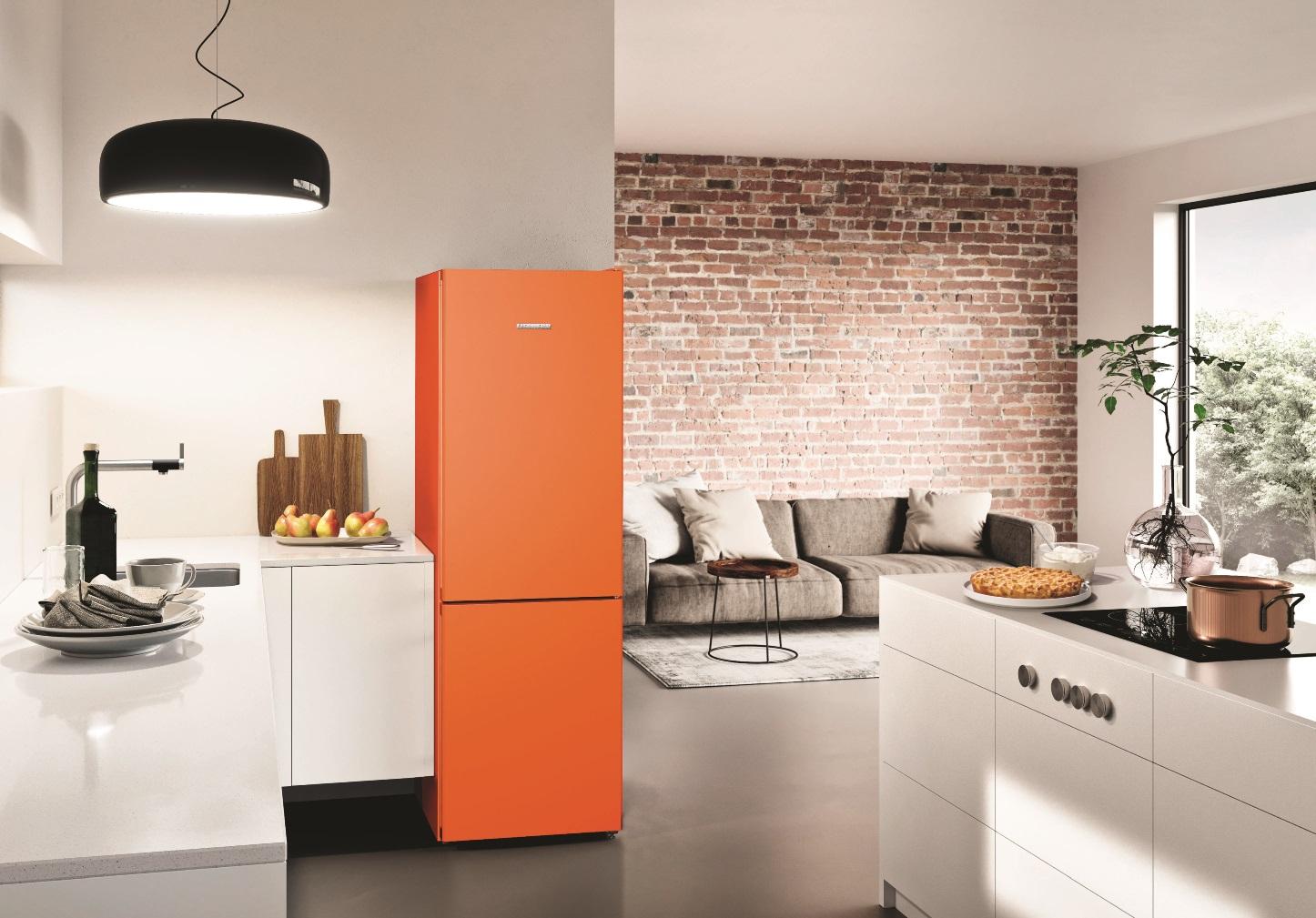 купить Двухкамерный холодильник Liebherr CNno 4313 Украина фото 7