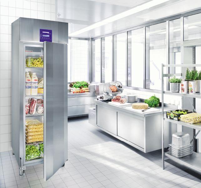 купить Холодильный шкаф Liebherr GKPv 6590 Украина фото 1