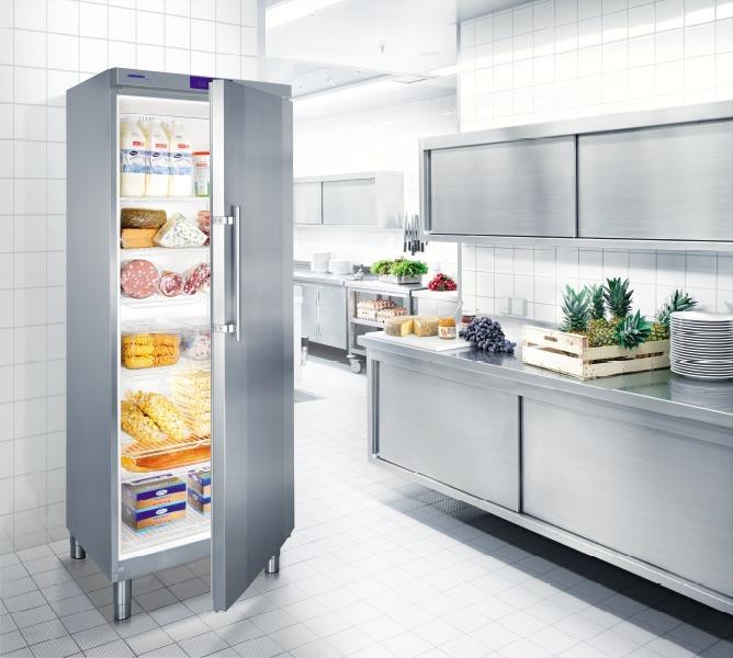 купить Холодильный шкаф Liebherr GKv 6460 Украина фото 1