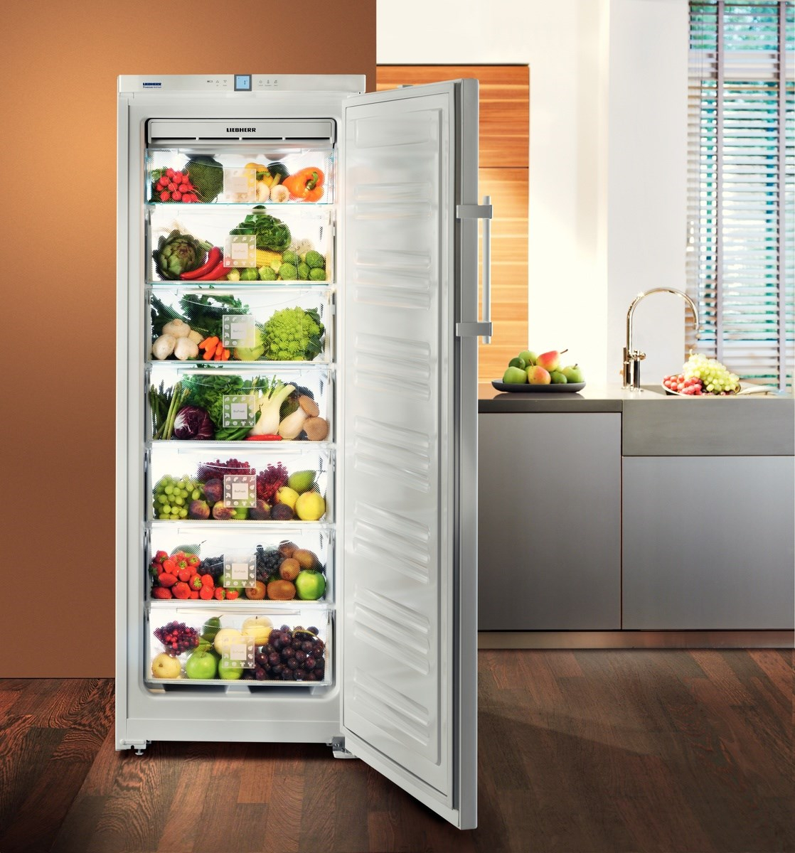 купить Однокамерный холодильник Liebherr B 2756 Украина фото 2