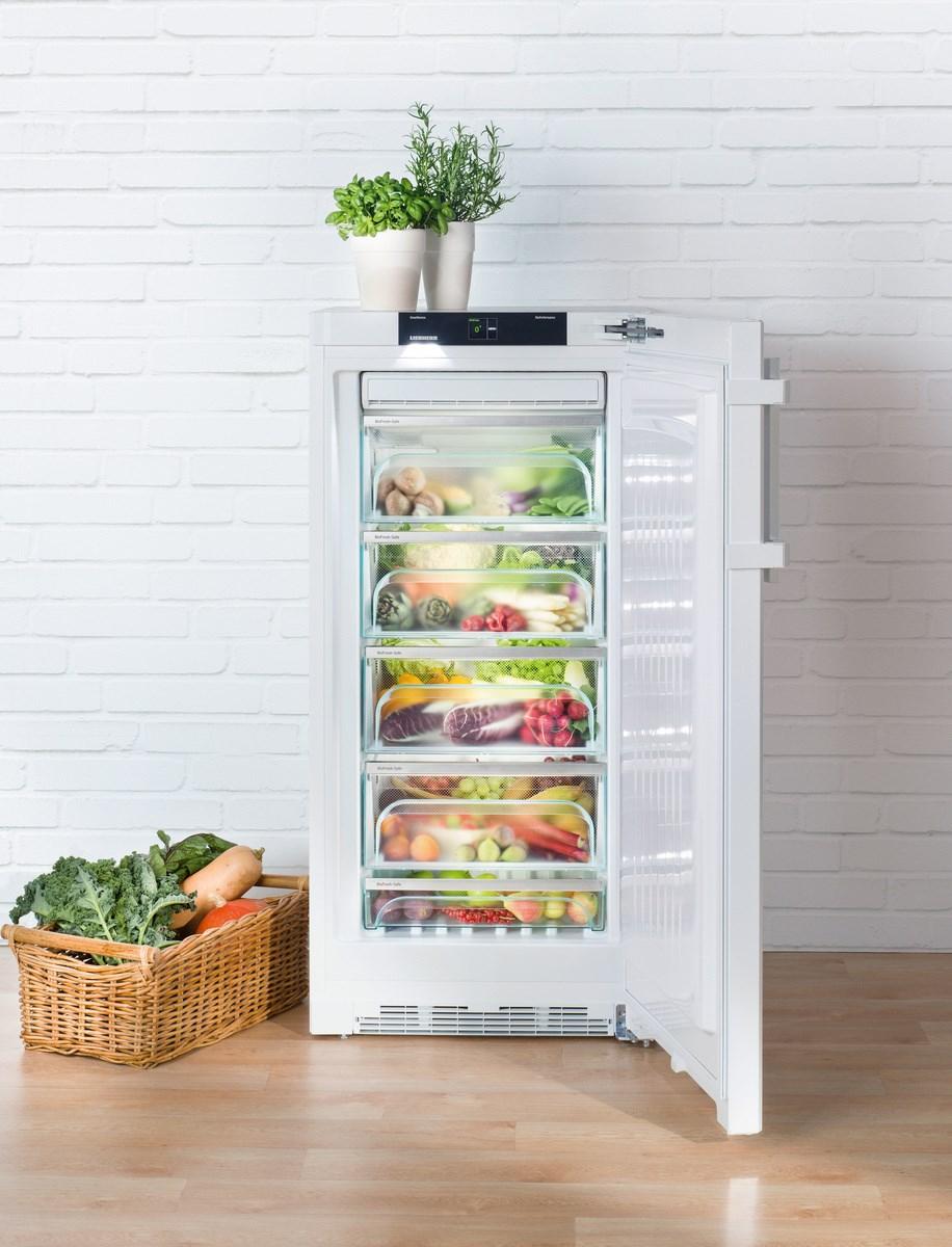 купить Однокамерный холодильник Liebherr BP 2850 Украина фото 7