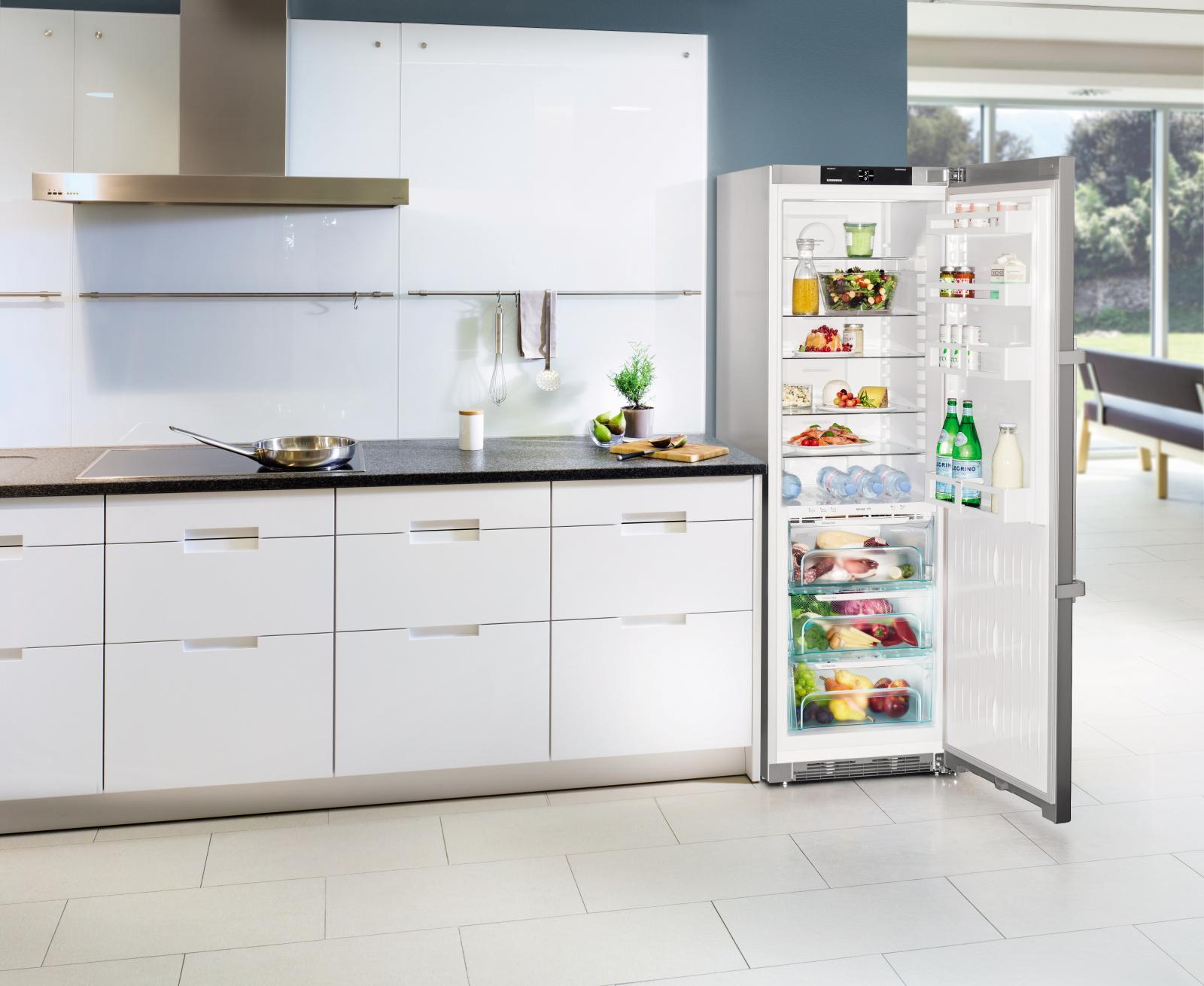 купить Однокамерный холодильник Liebherr KBef 4310 Украина фото 13