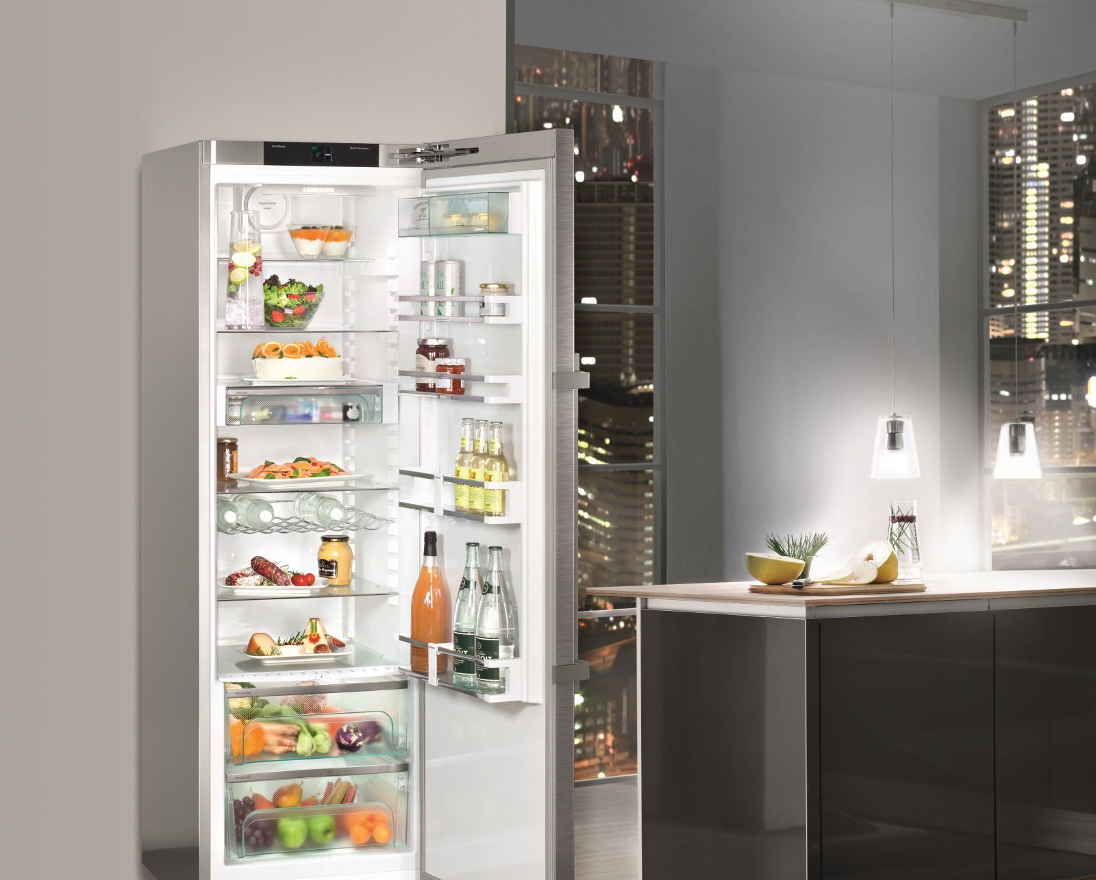 купить Однокамерный холодильник Liebherr KPef 4350 Украина фото 8