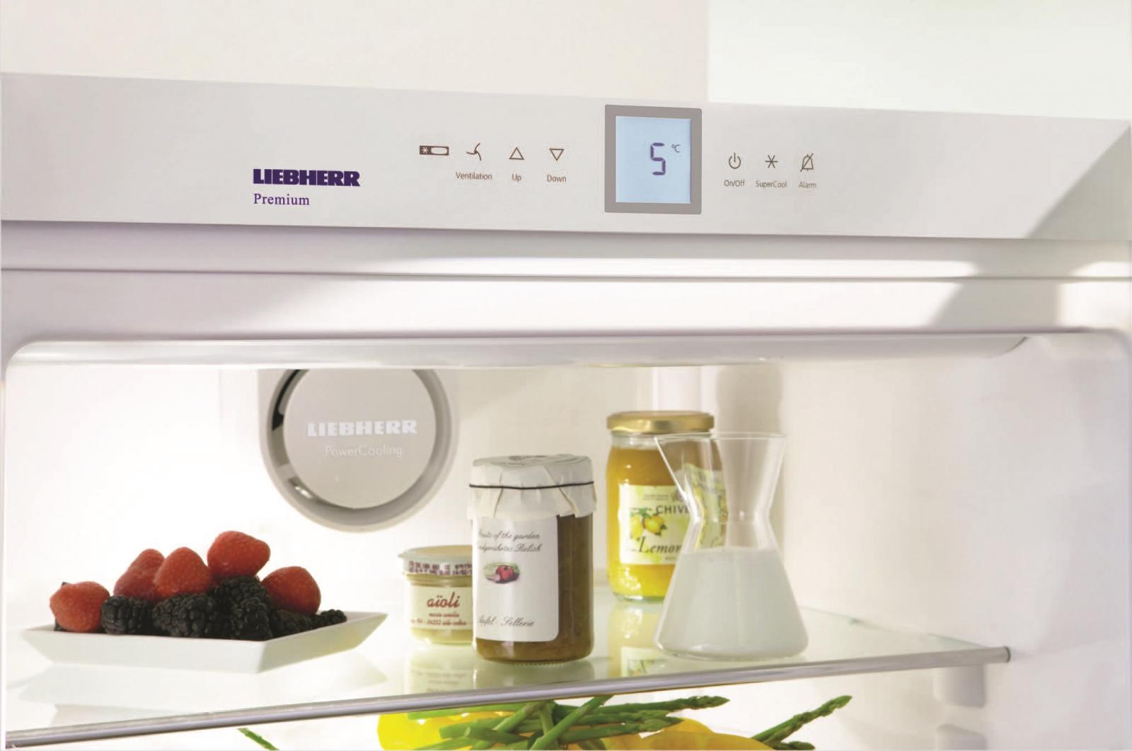 купить Однокамерный холодильник Liebherr SK 4260 Украина фото 5