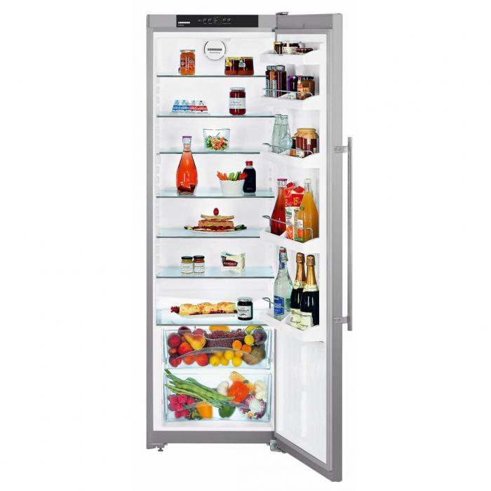купить Однокамерный холодильник Liebherr SKesf 4240 Украина фото 0