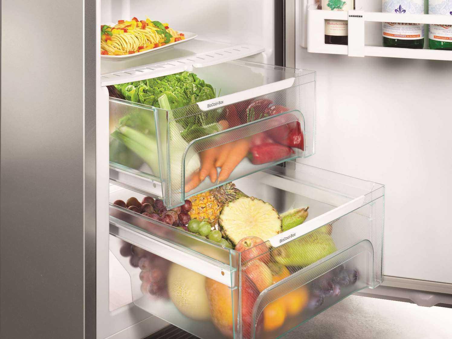 купить Однокамерный холодильник Liebherr K 4310 Украина фото 13