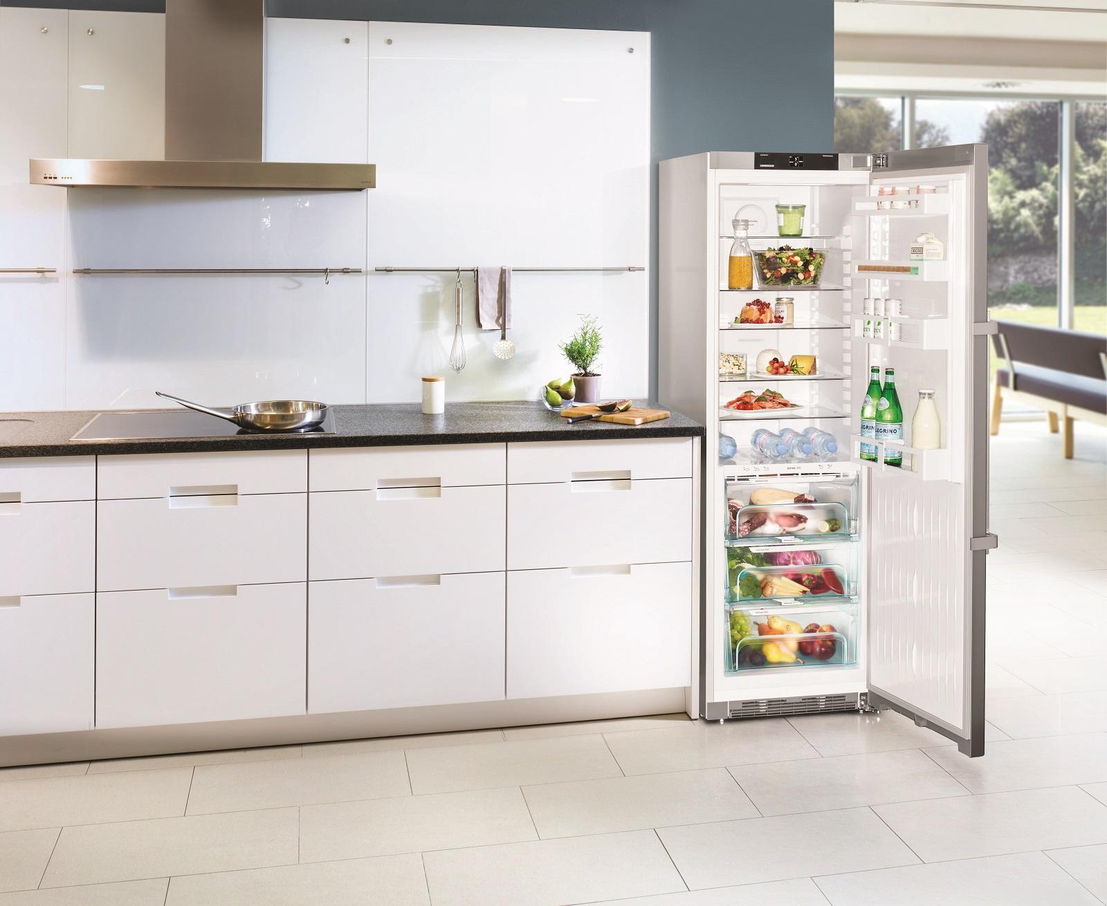 купить Однокамерный холодильник Liebherr KBef 4330 Украина фото 6