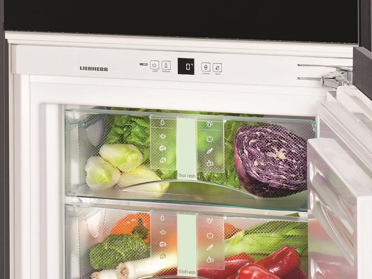 купить Встраиваемый однокамерный холодильник Liebherr IB 1650 Украина фото 1