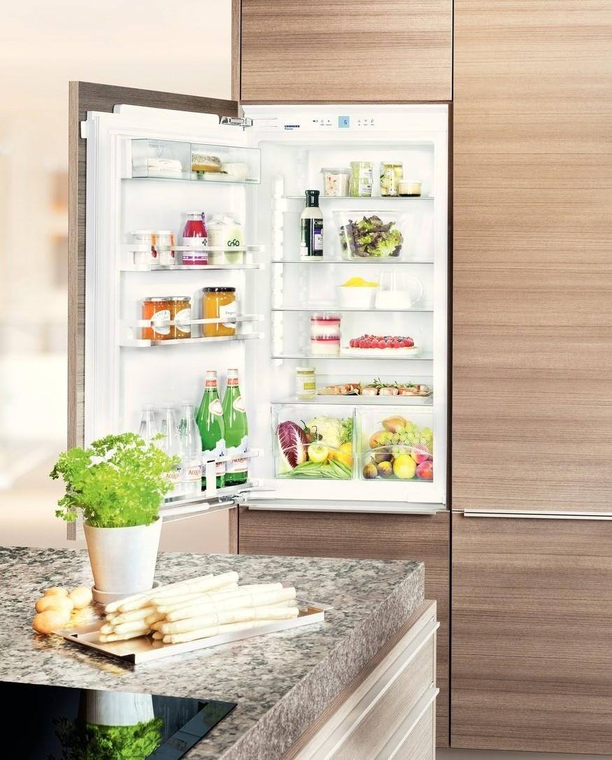 купить Встраиваемый однокамерный холодильник Liebherr IKP 1950 Украина фото 3