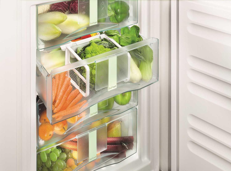 купить Встраиваемый однокамерный холодильник Liebherr SIBP 1650 Украина фото 6