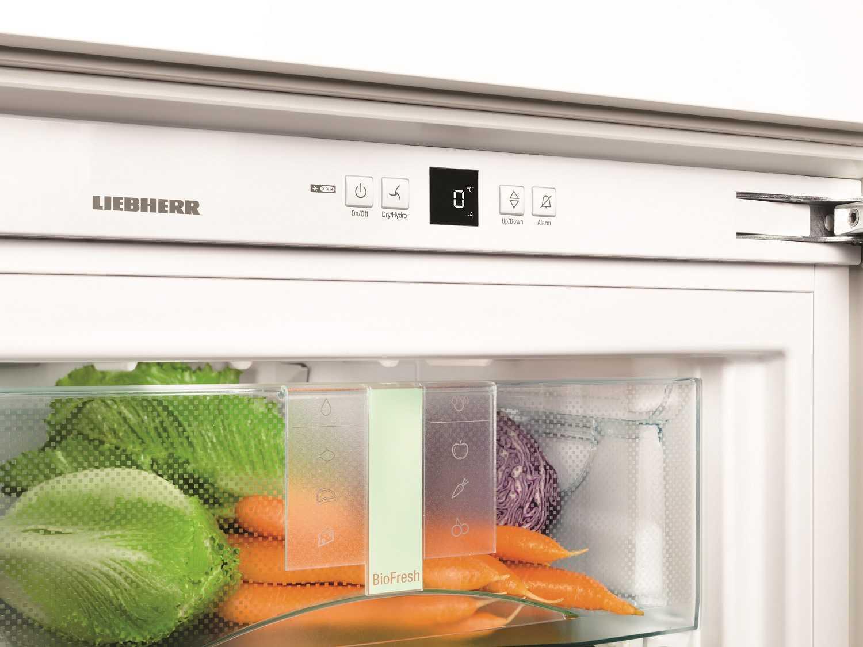 купить Встраиваемый однокамерный холодильник Liebherr SIBP 1650 Украина фото 7