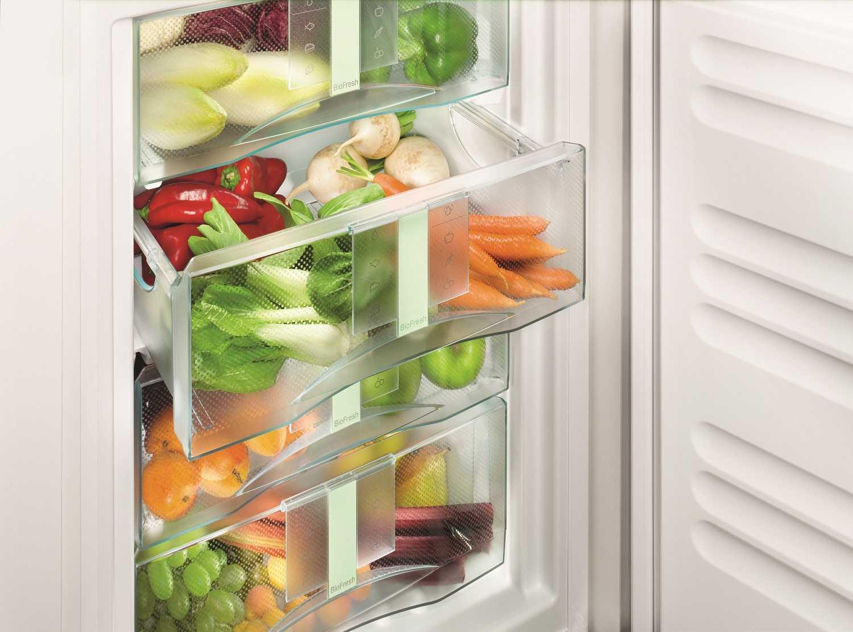 купить Встраиваемый однокамерный холодильник Liebherr SIBP 1650 Украина фото 4